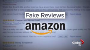 How to spot growing trend of fake online reviews